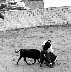 Derechazo de Serranito ante una de las eralas tentadas en Lodosa.