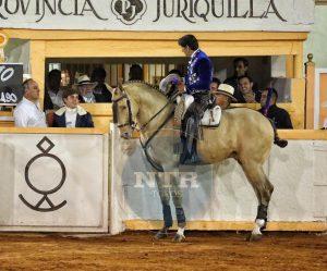 Momento en el que Diego Ventura brinda el toro a Guillermo Hermoso de Mendoza.