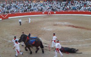 Vuelta al ruedo a un toro de Victorino Martín en Corella hace un par de meses. Ese día se les dio también a dos toros de Los Maños.