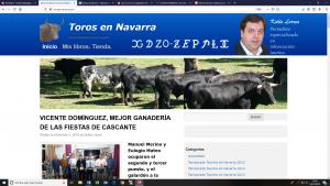 Página principal de www.torosennavarra.com
