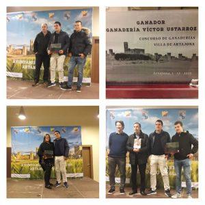 Tres momentos de la entrega de los premios taurinos de Artajona.