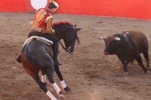 Guillermo Hermoso toreando con 'Disparate' en Villa Hidalgo.
