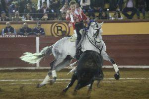 El caball 'Arsenio' se ha convertido en un fijo de salida en la cuadra de Pablo Hermoso de Mendoza.