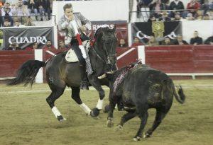 Disparate. León. 31-I-2020