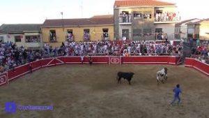 Un festejo popular en Cortes.