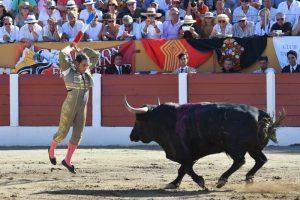 Sánchez Vara banderillea a un toro de Saltillo en la plaza de Ceret.