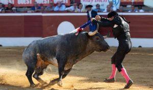 Ajustadísimo par de Manolo de los Reyes el año pasado en Mont de Marsan a un toro de La Quinta.