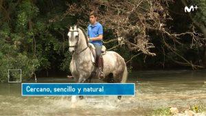 Guillermo Hermoso de Mendoza, cabalgando en su finca estellesa.