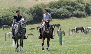 Pablo Hermoso de Mendoza cabalga, junto a su hijo Guillermo, en su finca estellesa.