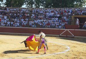Una momento de la primera corrida de toros de la Feria de Tafalla del año pasado.