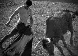 Muletazo de Imanol Sánchez a una vaca de Ripamilán.