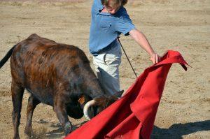 El diestro navarro Javier Marín, al natural ante una vaca de Arriazu.