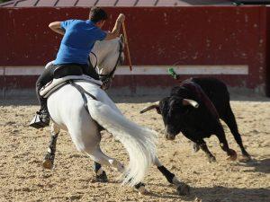Guillermo Hermoso de Mendoza entrenando en Zaraputz.