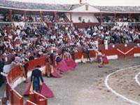 La plaza de toros de Corella al inicio de un festejo con los tendidos llenos.