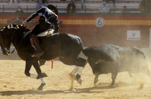 Jíbaro. Jaén. 18-X-2020