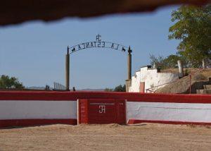 Plaza de tientas de la finca La Estanca