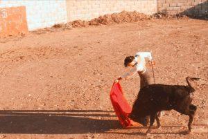 Jesús Martínez, durante el tentadero, iniciando un pase de pecho.
