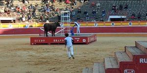 Un momento del desafío de bravura celebrado ayer en la plaza de Tudela.