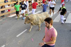 Imagen de un encierro en Tafalla, en 2016, con toros de Tomás Prieto de la Cal. Fotografía: Alberto Galdona